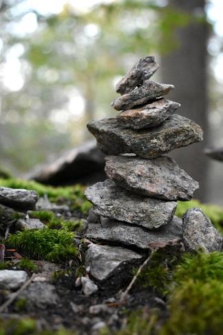 Bartlett Rocks @ Booklovers' Gourmet
